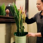 Blumenlieferant Blumenvase Dekoration Hotel