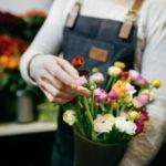 Blumenkübel Blumenauswahl Pfingstrosen
