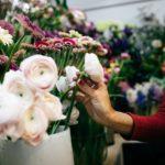 Blumenauswahl Pfingsrose beige rose